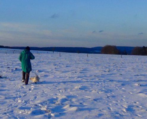 Winter in Belgische Ardennen
